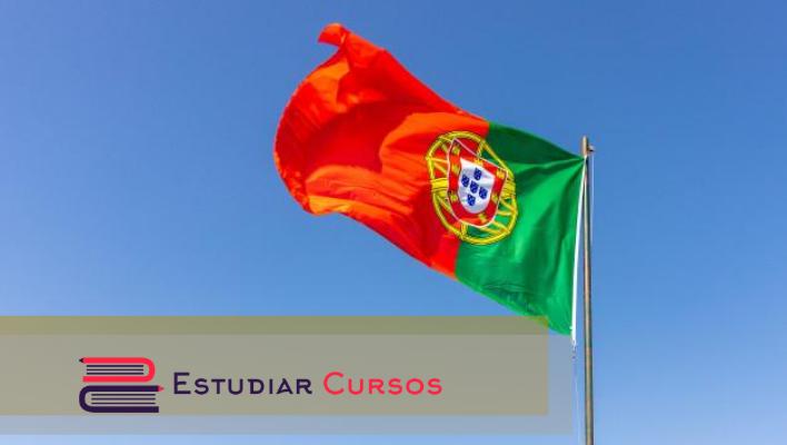 Portugués Básico Online