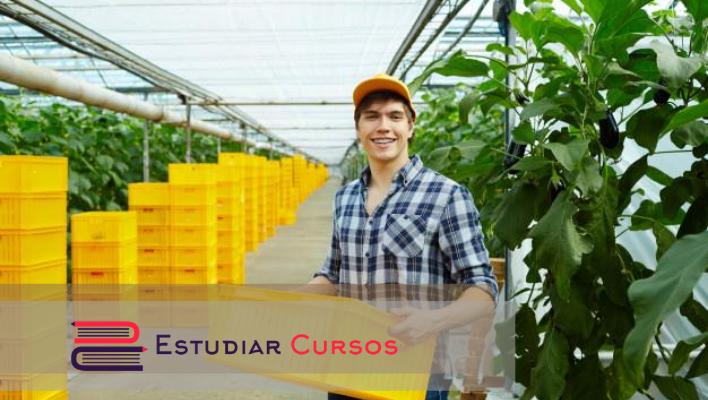 Licenciatura en Agroecología